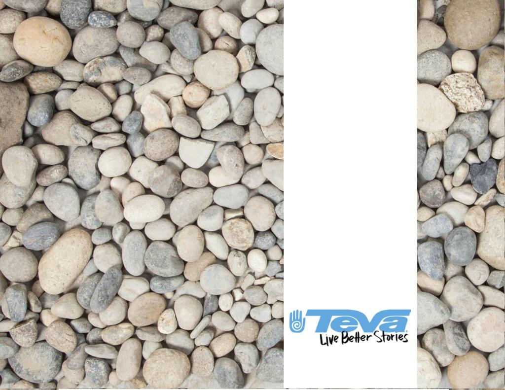 TEVA-eBook-1